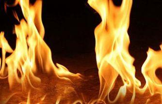 25 dönüm biçilmemiş arpa yandı