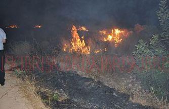 Mehmetçik'te kuru otlar yandı