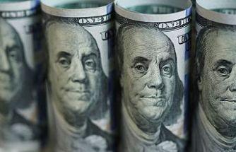 Covid-19 çekinceleri doları frenledi