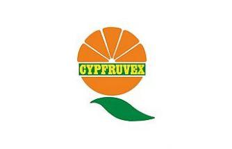 Cypfruvex, Mandora'yı 2 bin 350 TL'den alacağını duyurdu