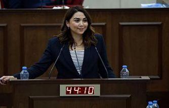 Ayşegül Baybars: Son yıllarda yargıya ayrılan kaynak yetersiz