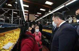 Başbakan Saner:  Cypfruvex, fiyat kontrolü için denge unsuru