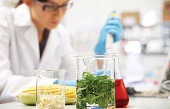 Haftalık gıda analizleri açıklandı