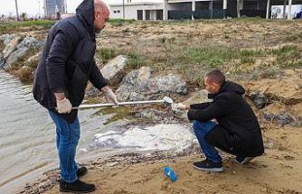 İskele Belediyesi: Halk plajı deniz suyu tahlilinde kirliliğe rastlanmadı