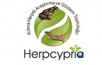 Kıbrıs Herptil Araştırma ve Gözlem Topluluğu kuruldu