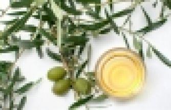 Zeytin yaprağı çayı ile ilgili sıcak su uyarısı