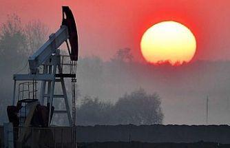 Wood Mackenzie: Petrol fiyatları Nisan'da 70-75 dolara yükselecek