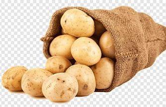 TÜK: Şubelerde softalık patates satışları devam ediyor