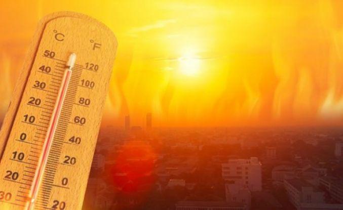 Dünya tarihinin en sıcak yılı