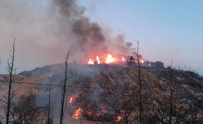 Ormanlık alanlara giriş ve ateş yakma yasağı uzatıldı